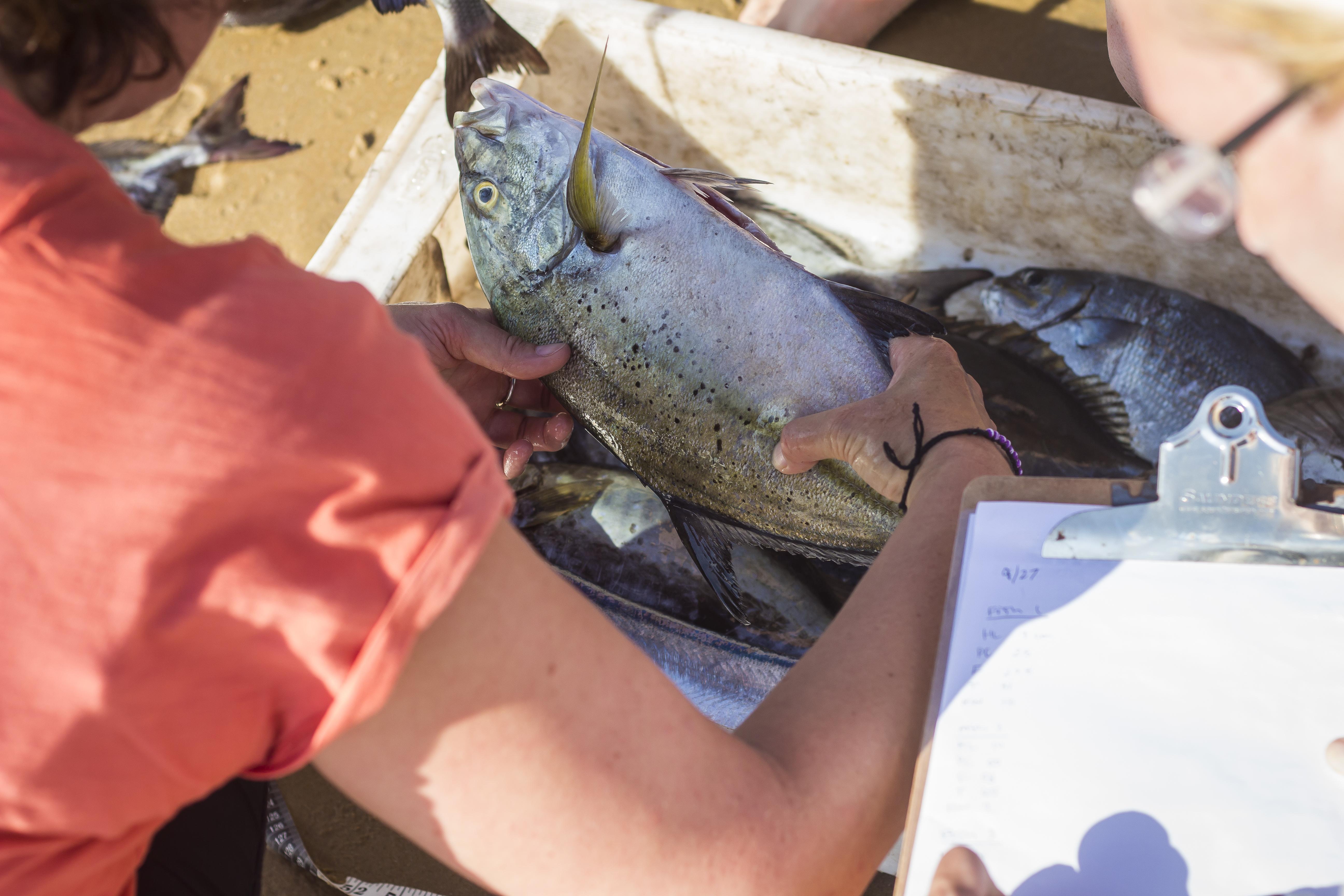 LTO_PWB_Fisheries research_Paindane